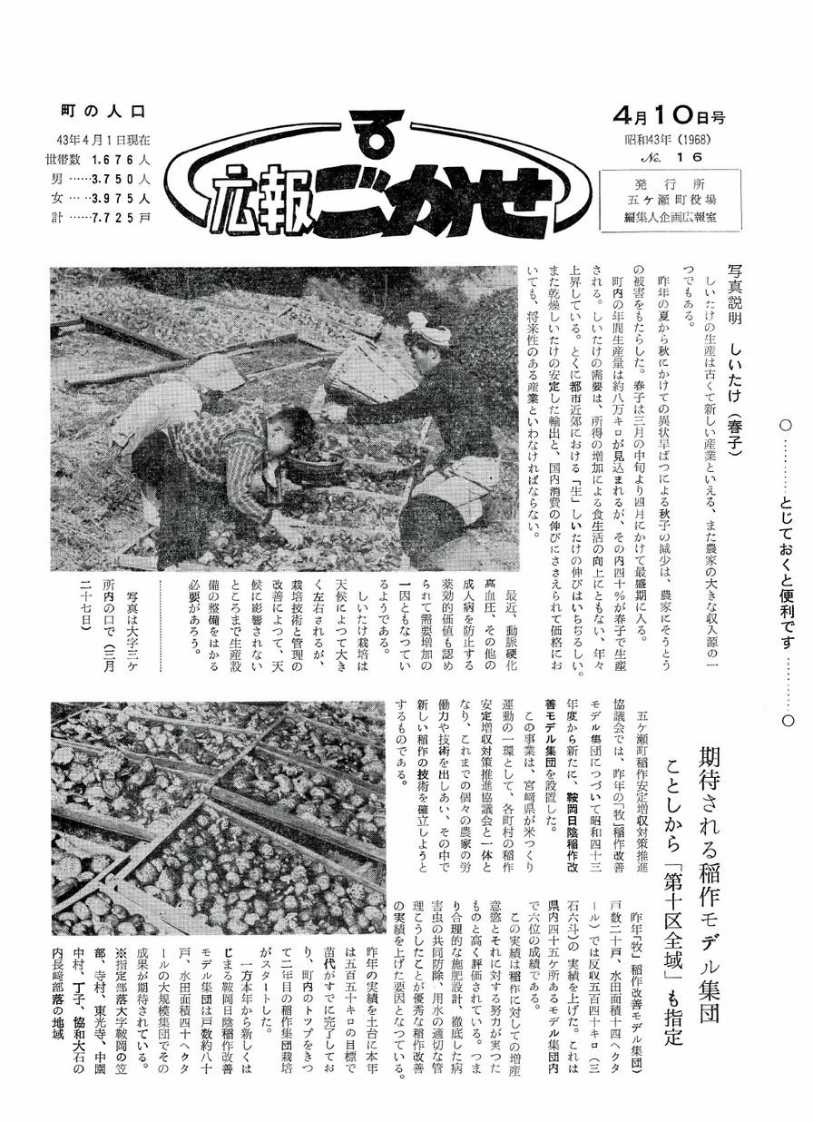 広報ごかせ No.16 1968年4月10日号の表紙画像