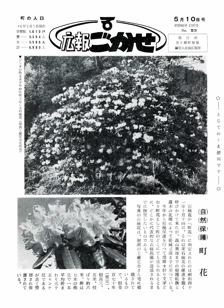広報ごかせ No.53 1971年5月10日号の表紙画像