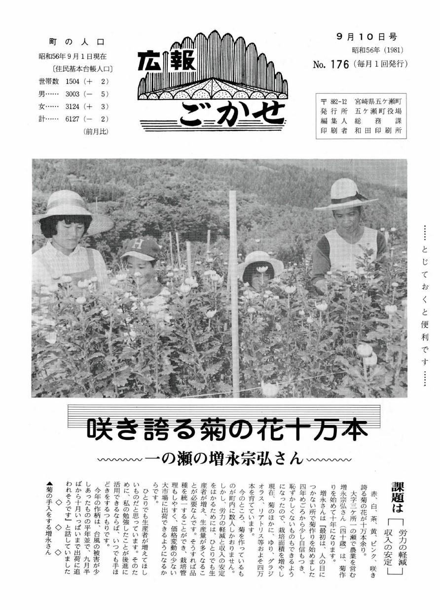 広報ごかせ No.176 1981年9月10日号の表紙画像